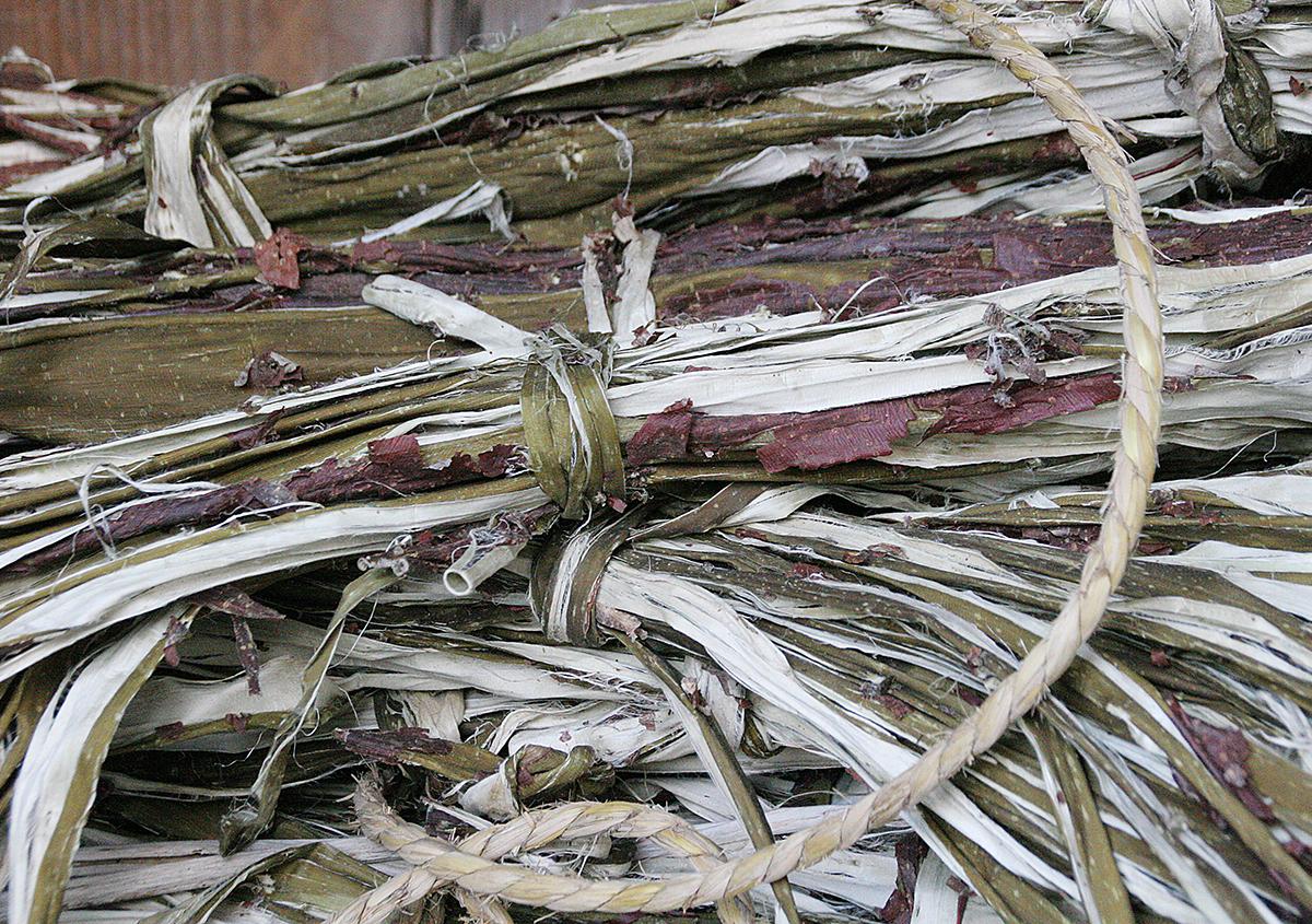 皮束 - 『樹皮が和紙になる』続:石州和紙