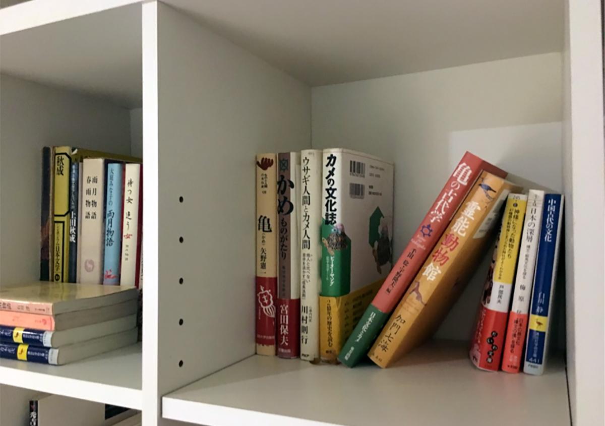 文字のある風景⑥『本棚』~背中で語る書物たち~ - 森カズオ | 活版印刷研究所
