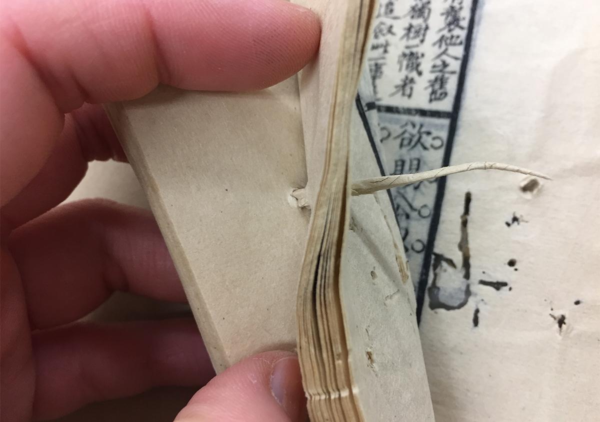 写真③ | 「直す」と「解体する」 - 京都大学図書館資料保存ワークショップ | 活版印刷研究所
