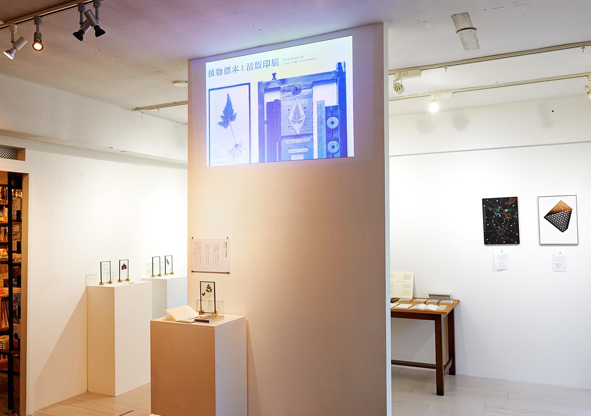 (写真1)「植物標本と活版印刷」展の風景。落ち着いた空間の中で、じっくり作品に触れることができました。写っている人物は筆者。:撮影スズキアサコ | 個展「 植物標本と活版印刷 」を訪ねる - 生田信一(ファーインク) | 活版印刷研究所