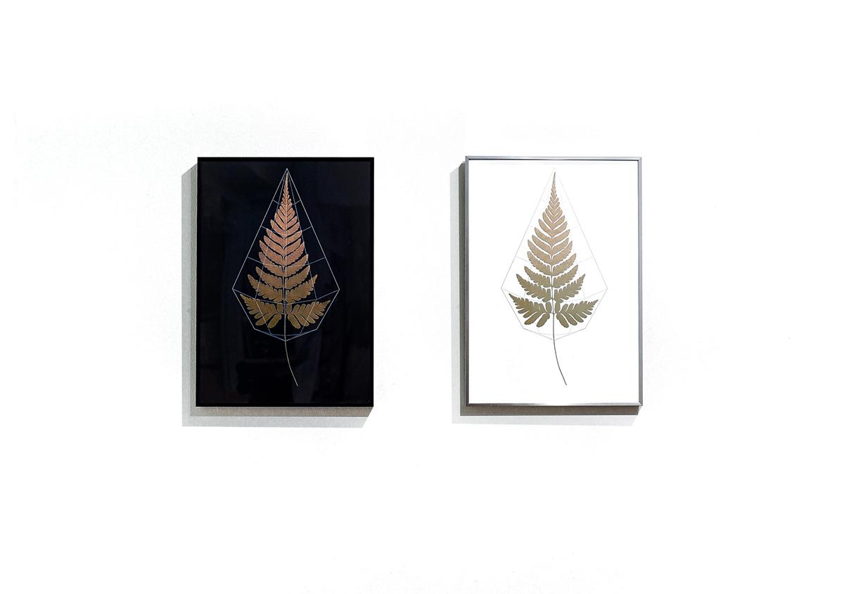 (写真17)しだ植物を題材にしたポスター。刷り色のゴールドが重厚で美しい作品です。背景の黒と白のコントラストで、ゴールドの鮮やかさが際立っています。 写真:ALBATRO DESIGN | 個展「 植物標本と活版印刷 」を訪ねる - 生田信一(ファーインク) | 活版印刷研究所