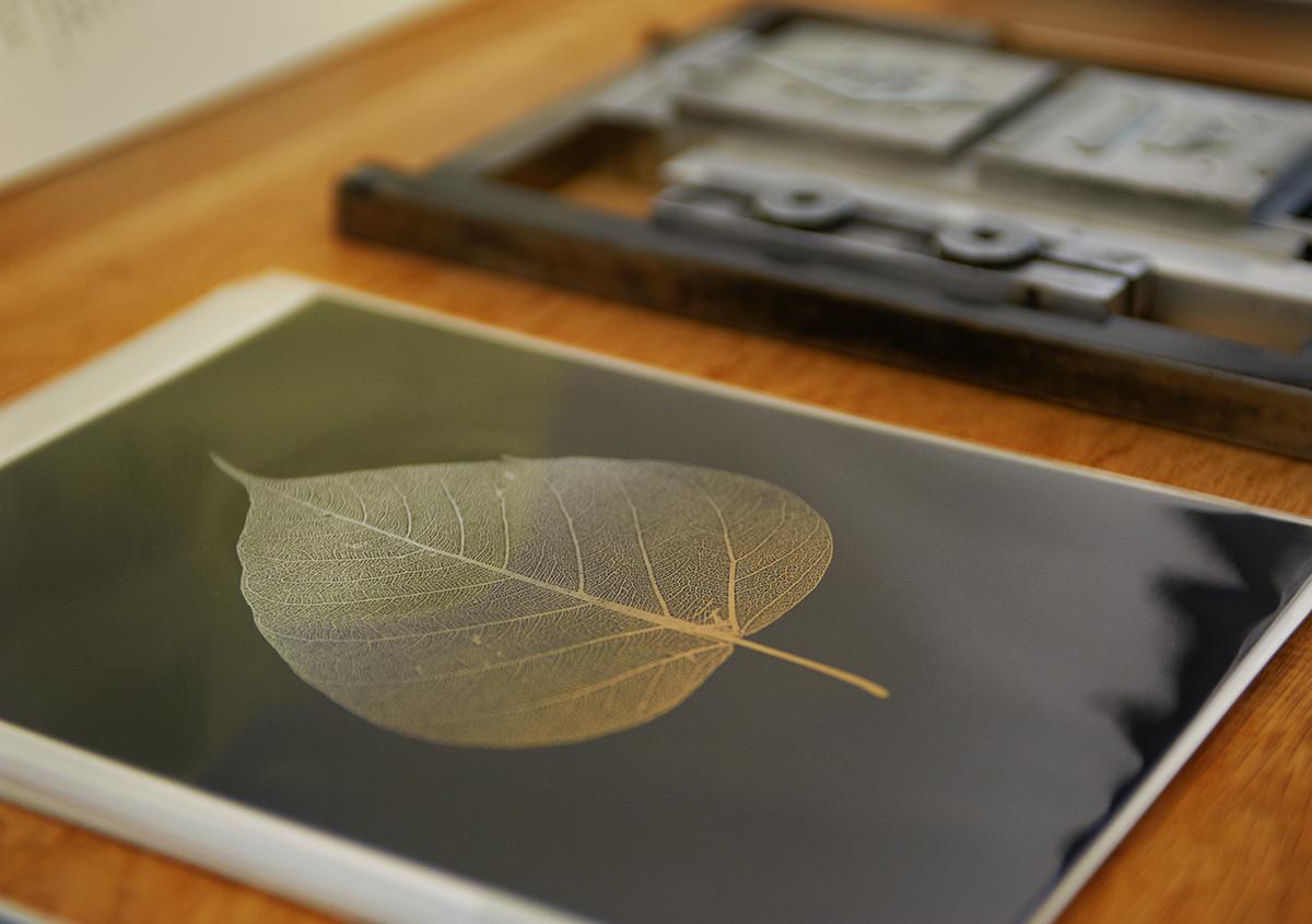 (写真21)ギャラリーでは、活版印刷によるカードも多数展示・販売されました。 | 個展「 植物標本と活版印刷 」を訪ねる - 生田信一(ファーインク) | 活版印刷研究所