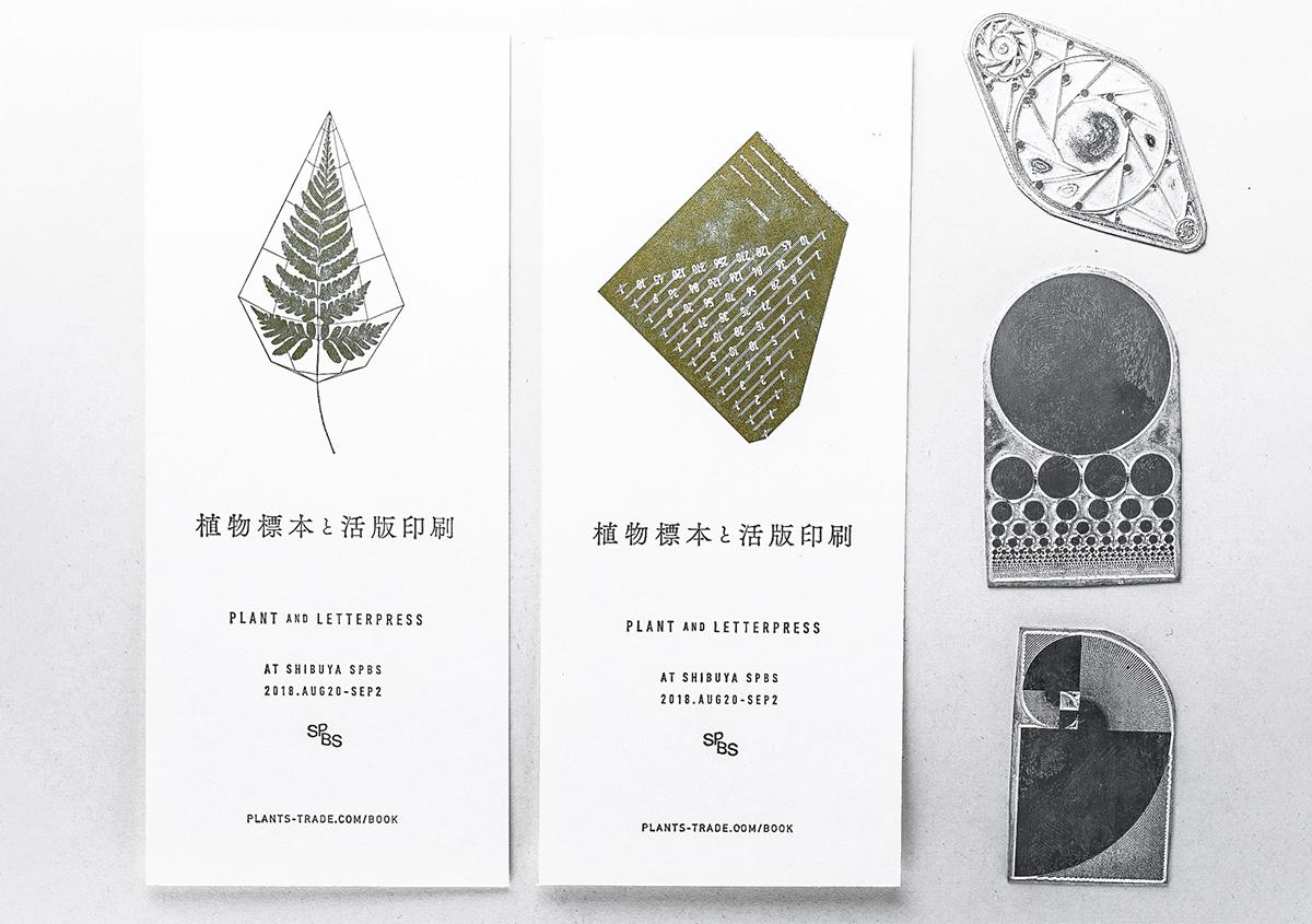 (写真27)「植物標本と活版印刷」展で配布されたカード。 | 活版印刷の技術で、複製できない価値を生み出す - 生田信一(ファーインク) | 活版印刷研究所