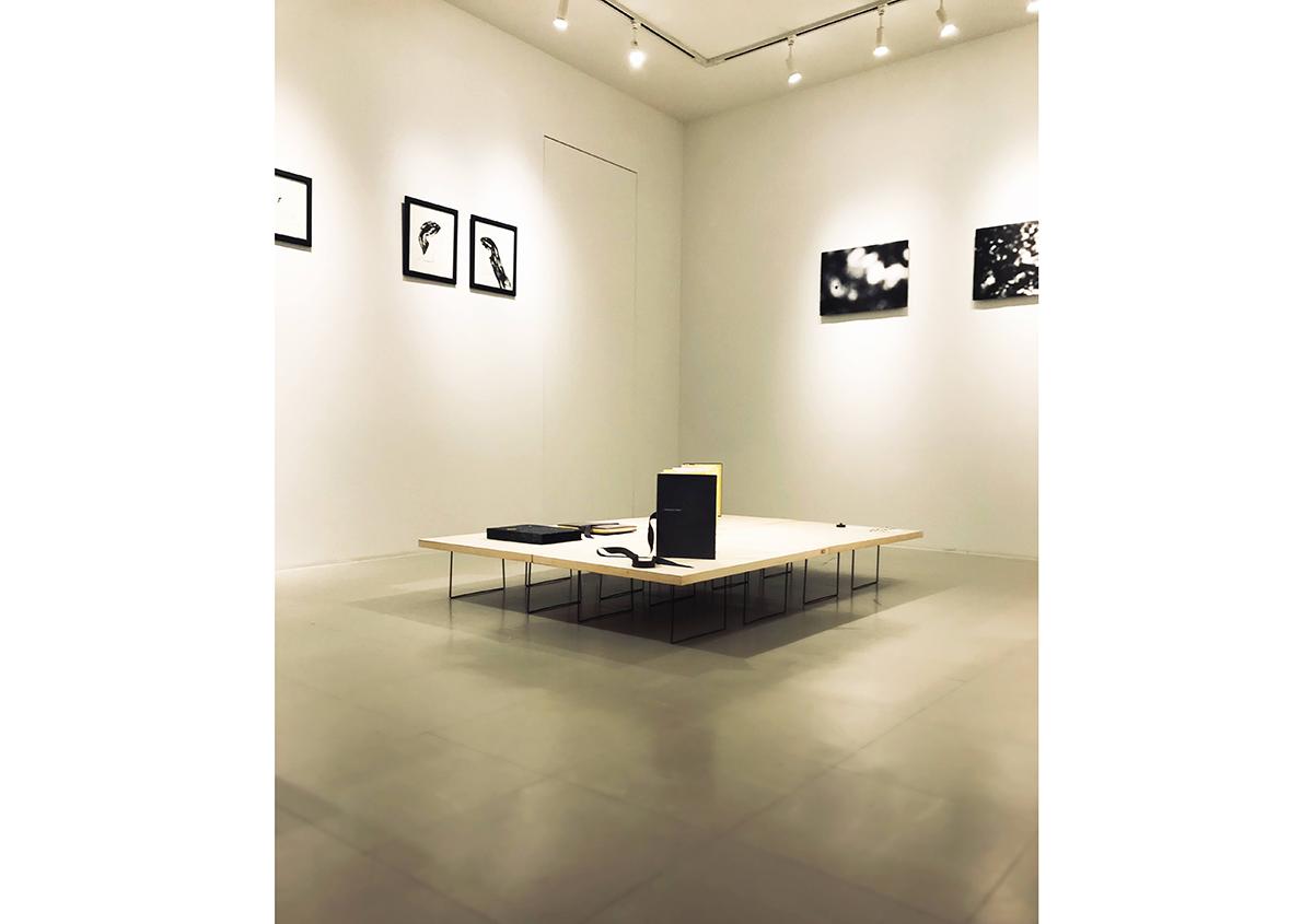 (写真11)ギャラリー展示の風景。 | 絵本『ちょうちょうなんなん』から派生した『a Butterfly Effect』展 - TOPICS | 活版印刷研究所