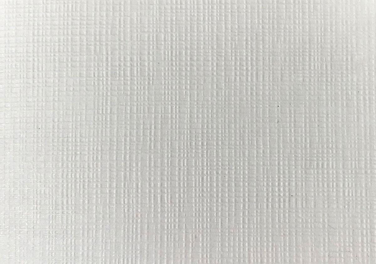 (写真26)民芸紙 白銀〈90g〉布目 | 紙に質感や模様を与えるプレス加工──池ヶ谷紙工所さんの話を聞きました - 生田信一(ファーインク) | 活版印刷研究所