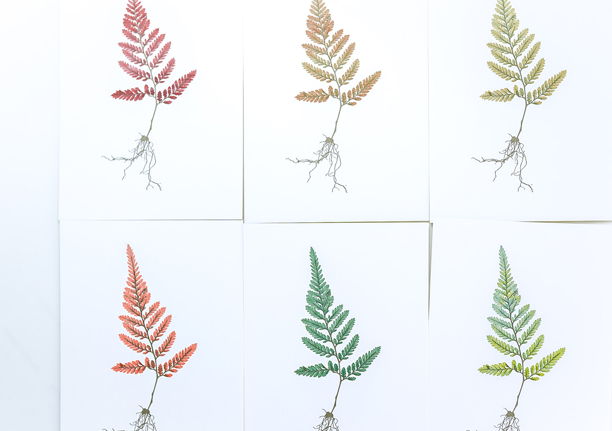 (写真13) | 印刷カフェ Print+Plantが都立大学駅にオープン、不思議な空間を覗いてきました - 生田信一(ファーインク) | 活版印刷研究所