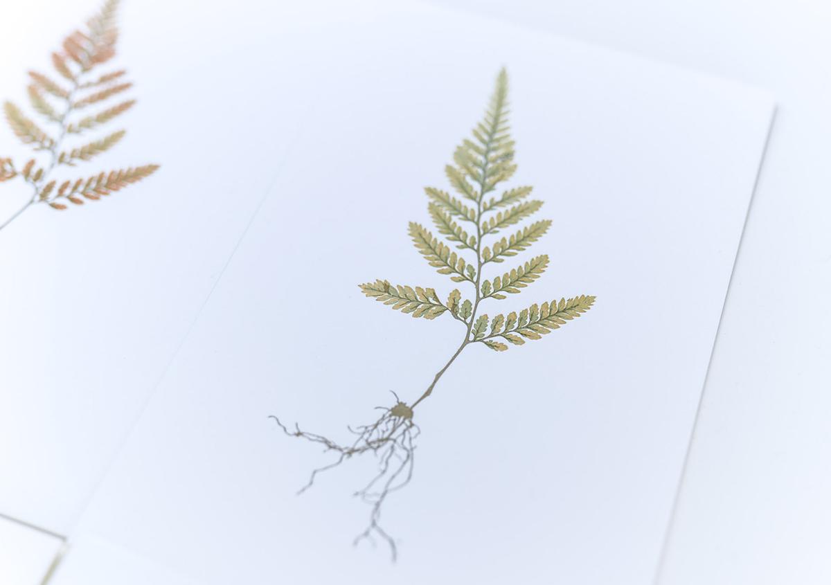 (写真14) | 印刷カフェ Print+Plantが都立大学駅にオープン、不思議な空間を覗いてきました - 生田信一(ファーインク) | 活版印刷研究所