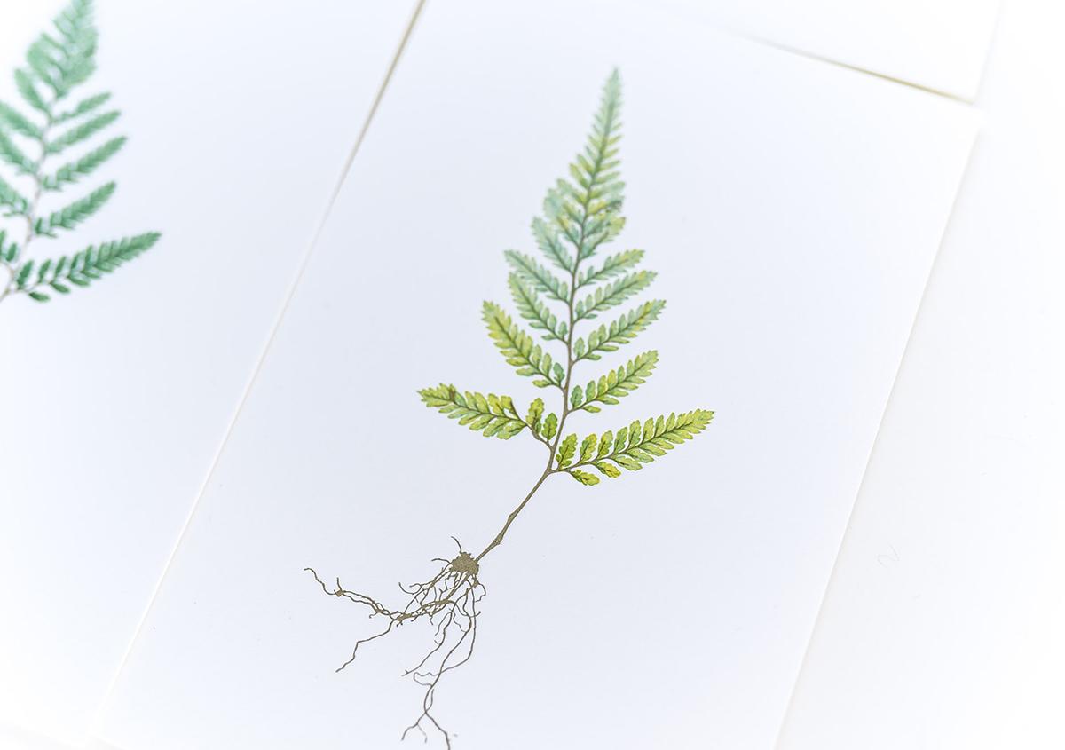 (写真15) | 印刷カフェ Print+Plantが都立大学駅にオープン、不思議な空間を覗いてきました - 生田信一(ファーインク) | 活版印刷研究所