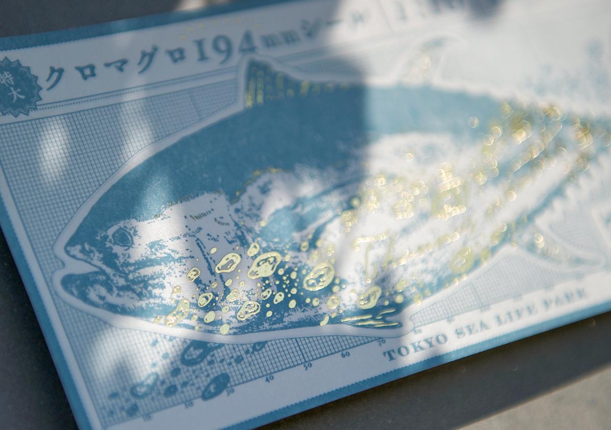 (写真6) | 葛西臨海水族園 開園30周年記念イベントで作られた 『特大!クロマグロ194mmシール』 - 生田信一(ファーインク) | 活版印刷研究所