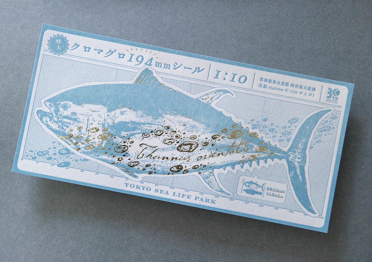 葛西臨海水族園 開園30周年記念イベントで作られた 『特大!クロマグロ194mmシール』