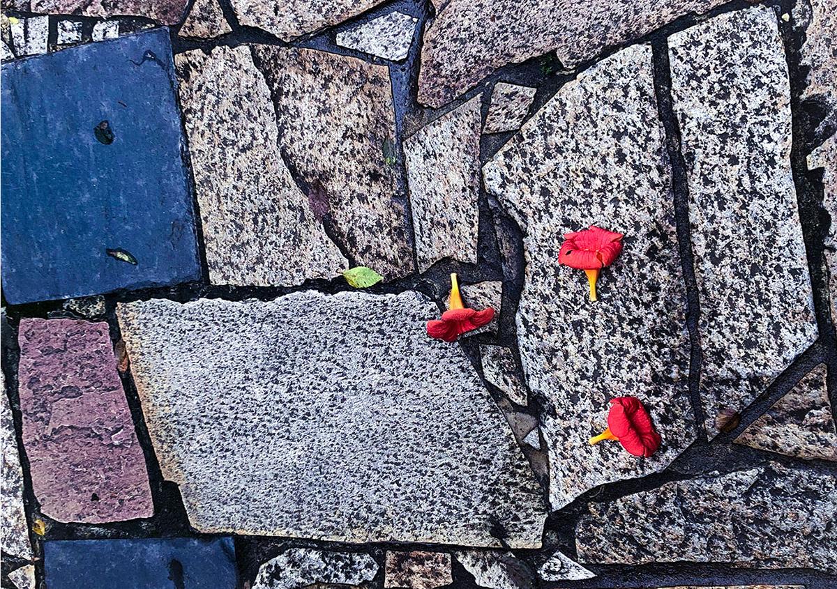 写真1 | 道道の色 - 白石奈都子 | 活版印刷研究所