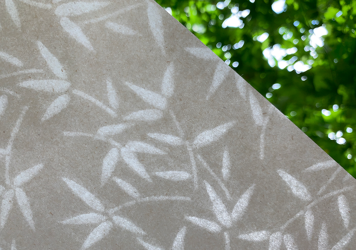 (写真1) | 淀川の保全から生まれたヨシの紙に導かれて アトリエMay - 白須美紀 | 活版印刷研究所