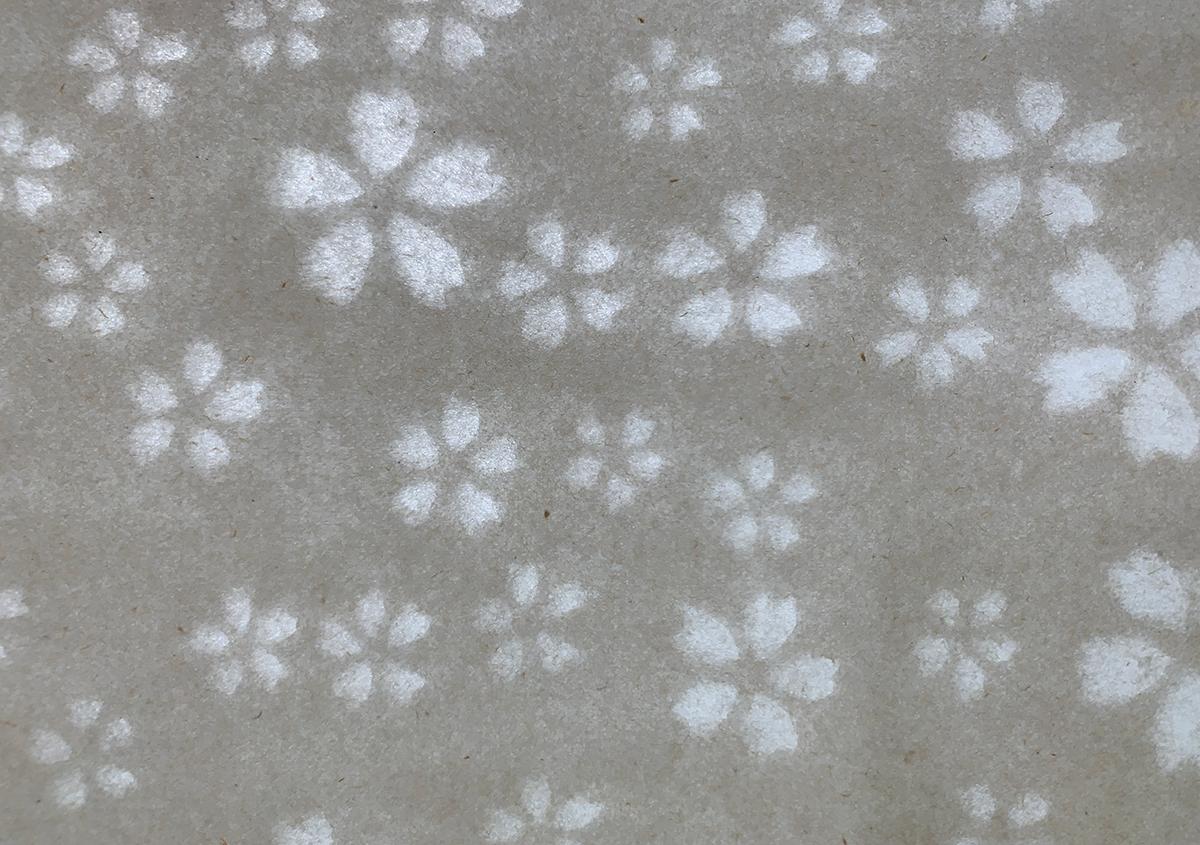 (写真2) | 淀川の保全から生まれたヨシの紙に導かれて アトリエMay - 白須美紀 | 活版印刷研究所