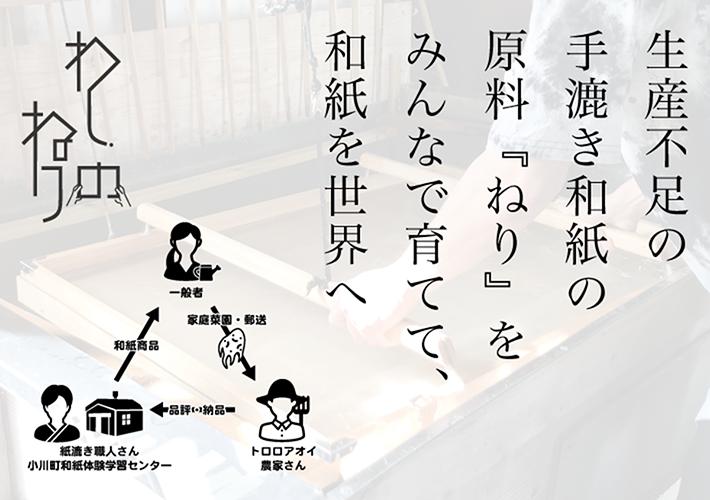 (写真1)   日本の和紙を守りたい!『ねり』を生み出すトロロアオイ観察日記 - 京都大学図書館資料保存ワークショップ   活版印刷研究所