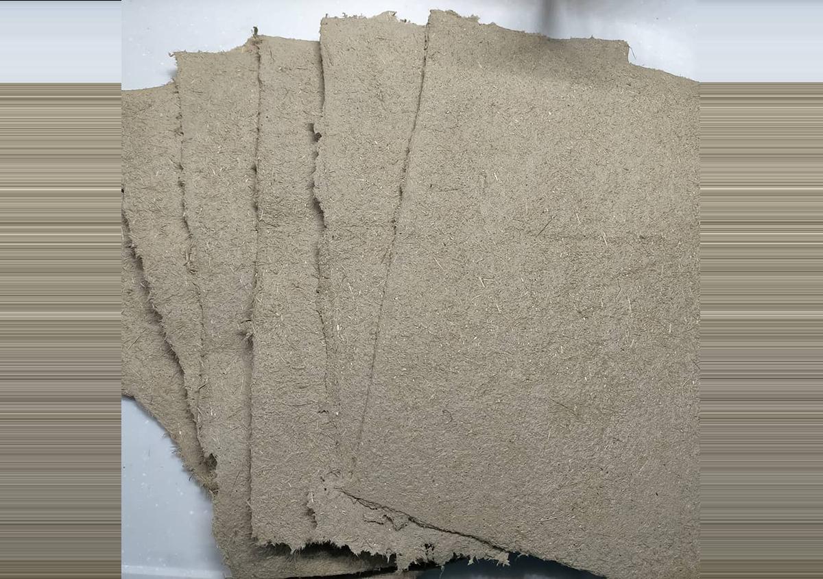 中村さんの漉かれた象糞紙「象のUNKO  paper」   象糞紙という価値。「象牙やめてUNKOにしませんか?」 - 京都大学図書館資料保存ワークショップ   活版印刷研究所